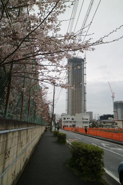 日本医科大学グラウンドと、新丸子キャンパス跡地