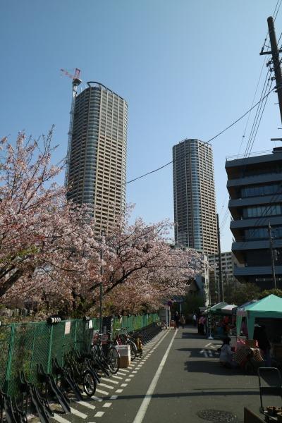 渋川沿いの出店エリア