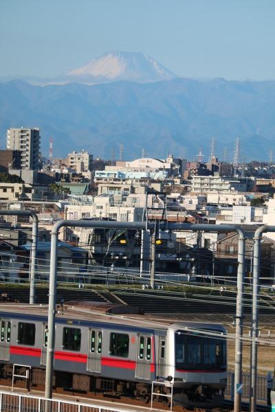 多摩川浅間神社から見える富士山