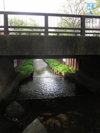 陽光に照らされる渋川