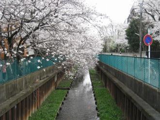 従来の法政二中・高前の渋川(未整備)