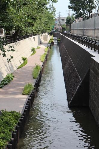渋川に新設された親水遊歩道