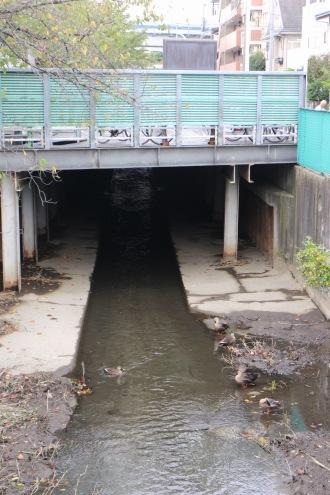 「矢倉橋」以南の駐輪場