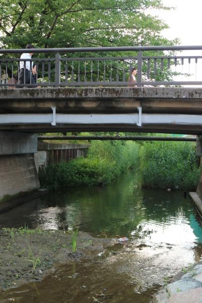 稲荷橋とその先の渋川