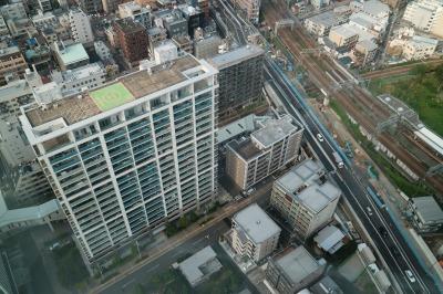 ステーションフォレストタワーから見た低層住宅街