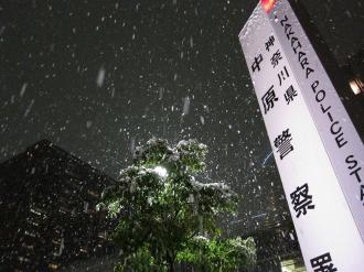 中原警察署に降る雪