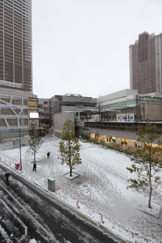 雪が積もったこすぎコアパーク