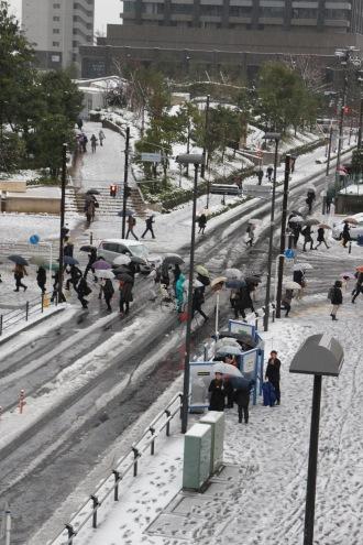 武蔵小杉駅新駅周辺の雪景色