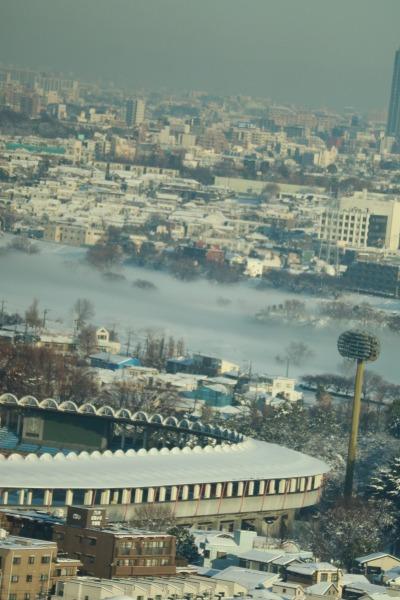 多摩川の「川霧」