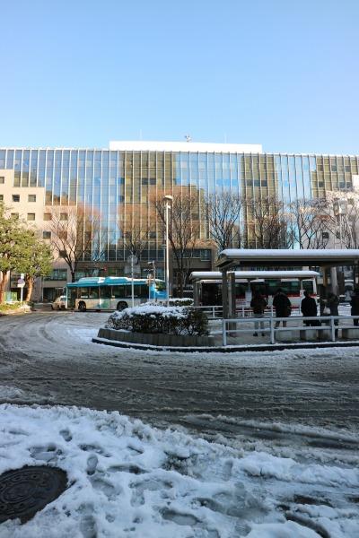武蔵小杉駅北口の雪景色