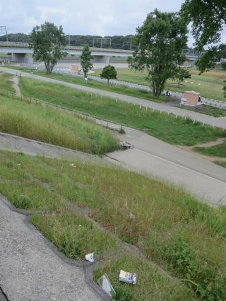 土手の上から、多摩川河川敷を見る