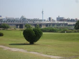 多摩川ゴルフ倶楽部のハート型の木