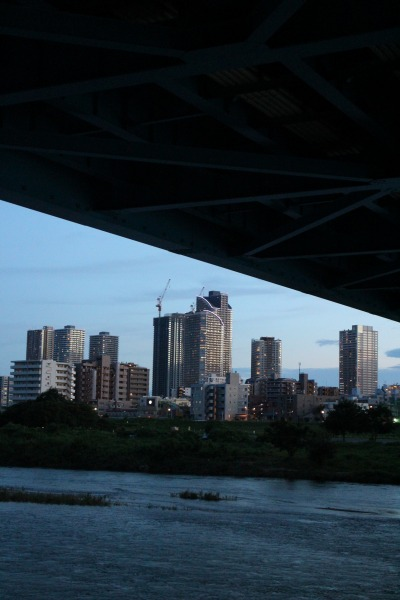 丸子橋の下から覗く武蔵小杉の高層ビル群