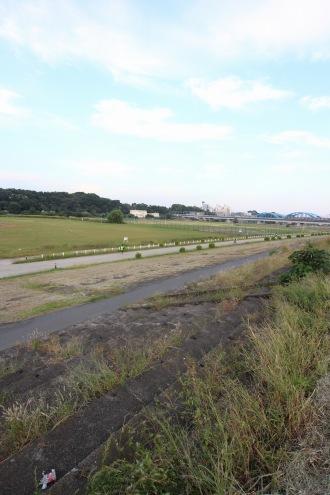 多摩川を見守り続けるメインスタンド
