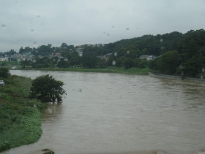 増水した多摩川