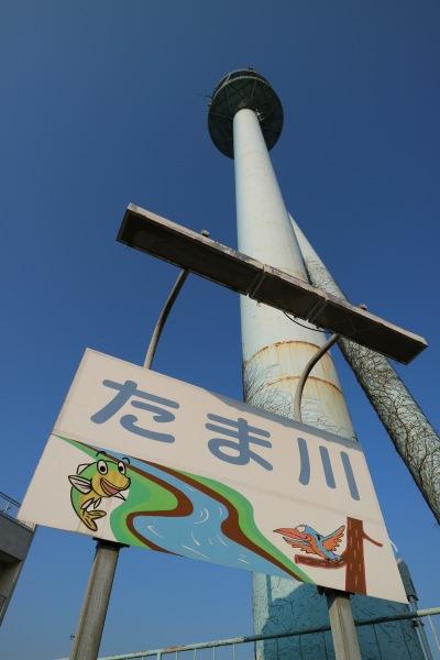 京浜河川事務所の鉄塔