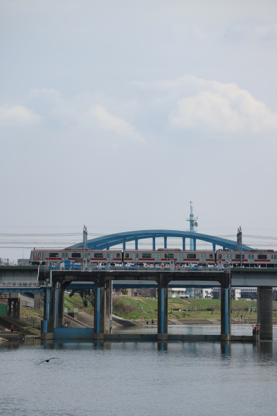 水門脇の魚道