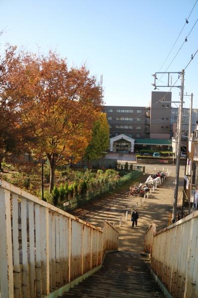 宮内歩道橋から、等々力緑地方面