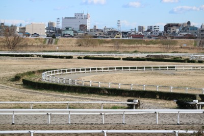 「川崎競馬練習馬場」