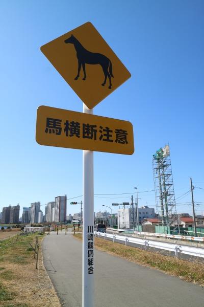 多摩川土手の「馬横断注意」