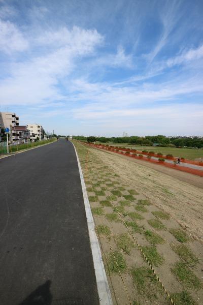 整備が完了した区域の多摩川堤防