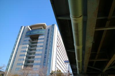 多摩川を渡る「ガス橋」