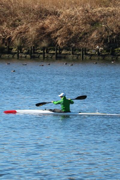 ガス橋付近で、カヌーを練習する人