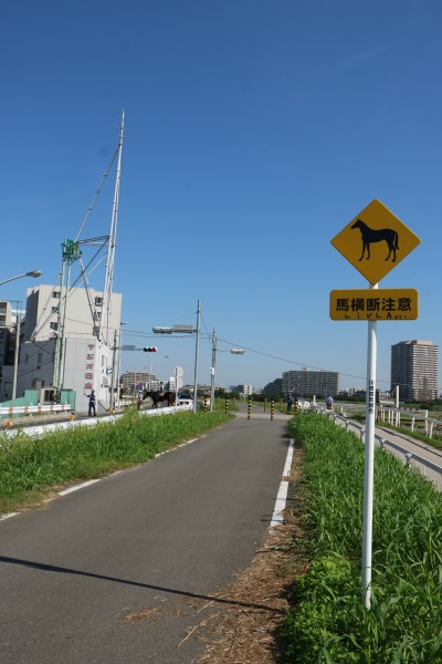 「馬横断注意」の標識