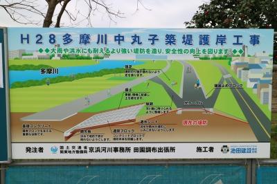 H28多摩川中丸子築堤護岸工事