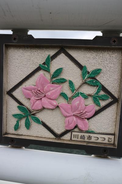 川崎市の花「つつじ」