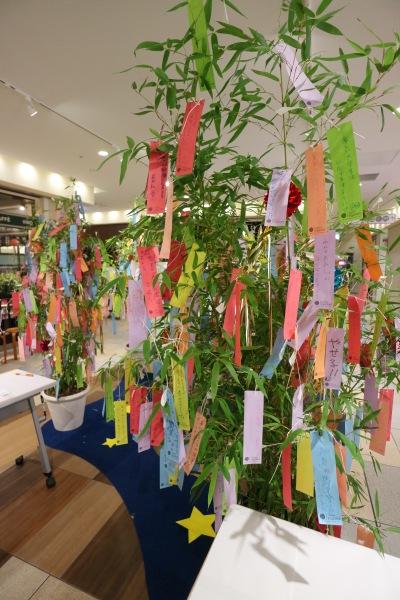 武蔵小杉東急スクエアの七夕飾り