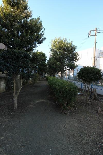 廃線跡地の緑道