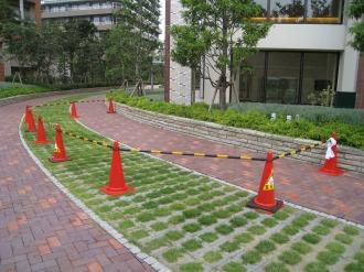 清掃ポイント直下の公開空地