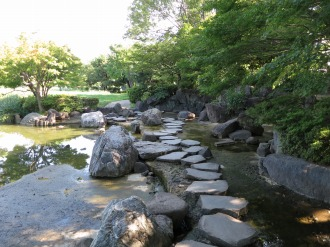 蓮池を渡る石