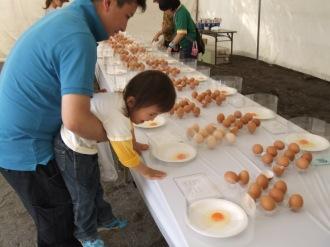 鶏卵品評会