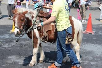 ポニーの乗馬