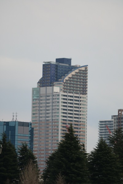 エクラスタワー武蔵小杉とパークシティ武蔵小杉ミッドスカイタワーの合体