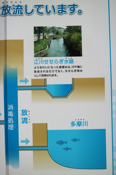 処理された水の放流