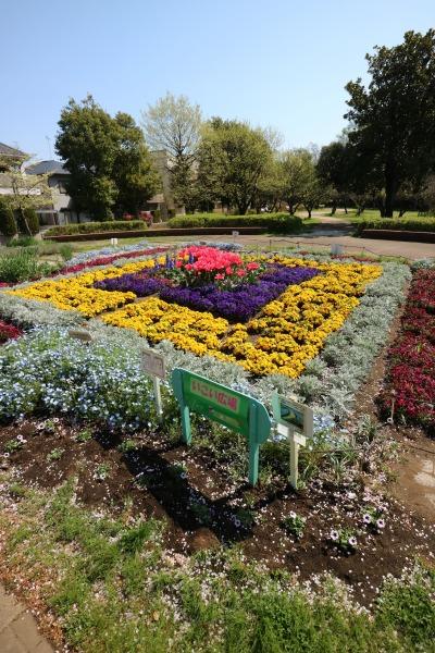 2017年4月の花壇