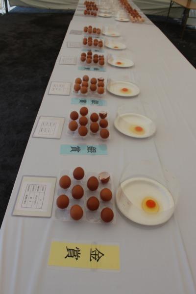 「卵の品評会」結果