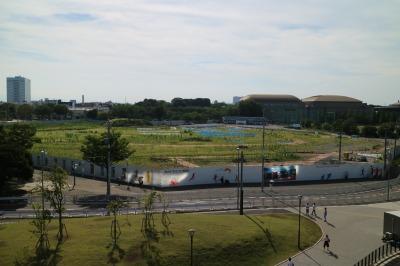 等々力硬式野球場の建設現場