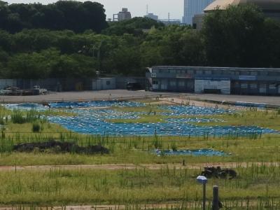 廃棄物と土壌汚染が判明した建設地
