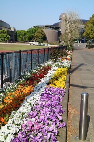 等々力補助陸上競技場前の花壇