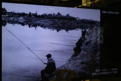 1955~1964年 東横池(東横線新丸子下車)