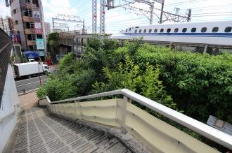 綱島街道脇の緑地帯