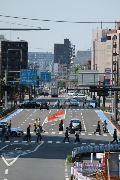 グランツリー武蔵小杉前の区間(2014年11月供用開始))