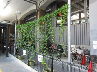 JR武蔵小杉駅自転車第4駐車場のゴーヤー
