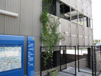 JR武蔵小杉駅自転車等第3駐車場のゴーヤー