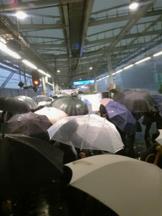 傘満開の横須賀線武蔵小杉駅ホーム