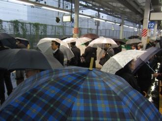 傘、傘、傘